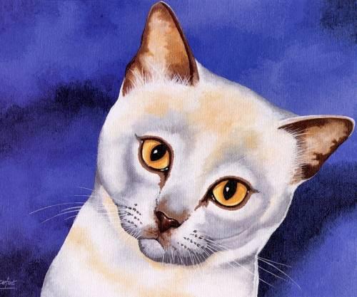 Картинки кошки нарисованные кошки